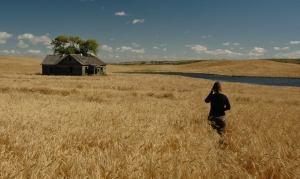 The house behind the wheat.